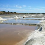 Marais Salant; a natural salt pan in the bay of the Atlantic Ocean